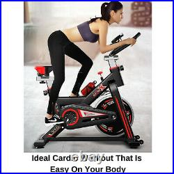Exercise Spin Bike 11KG Flywheel Cycling Bicycle Fitness Indoor Home Training D