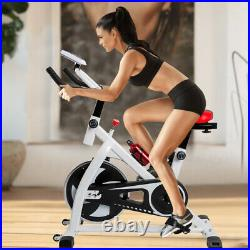 Workout Machine Home Gym Exercise Bike/Cycle Indoor Training 12kg Flywheel